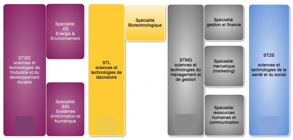 Sections du Bac Technologique - De la classe de première à la classe de terminale